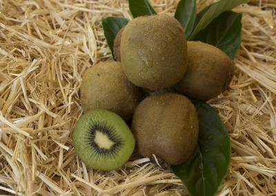 Kiwifruit by Student Lynnie Taylor
